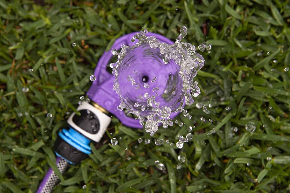 Don't be a drip: how to be water wise in your garden
